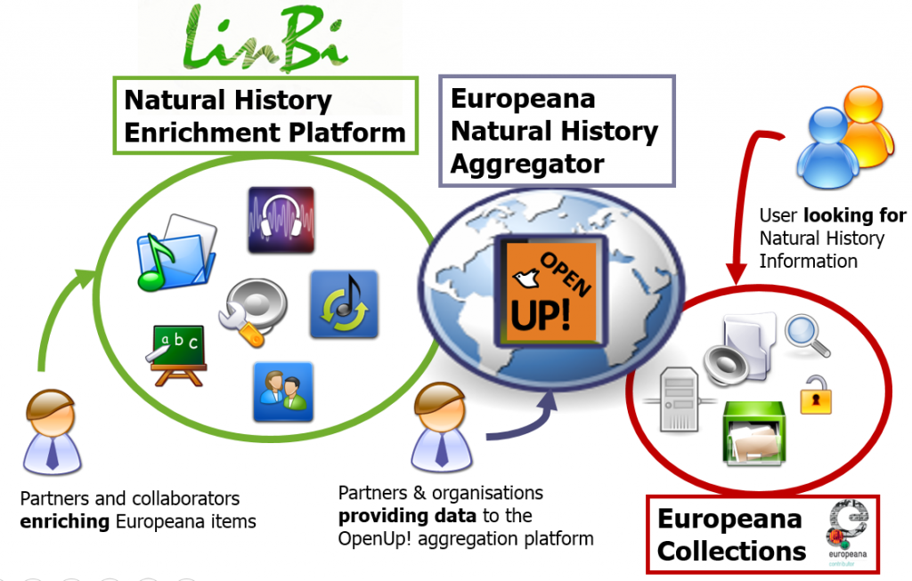 LinBI data overview